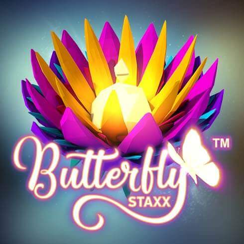 Butterfly Staxx - 23316